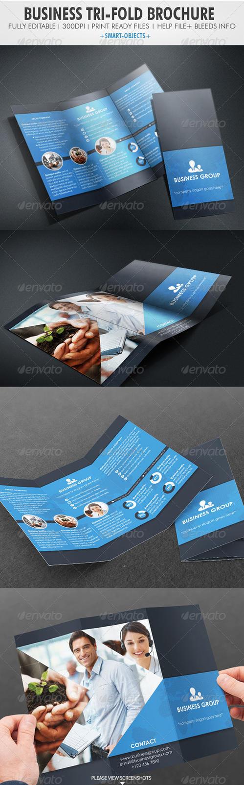 Business Tri-fold Brochure by vitalyvelygo