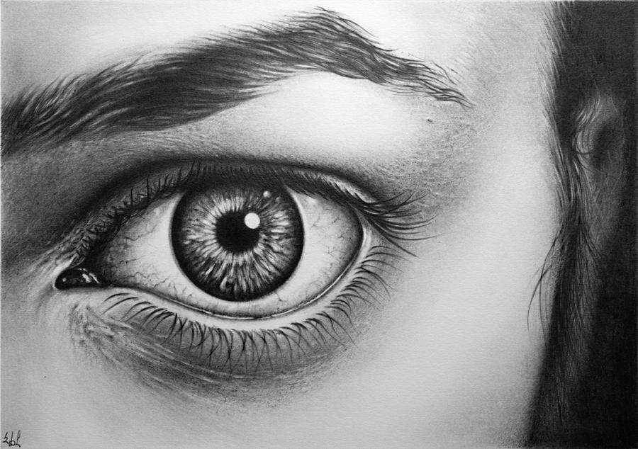 Ophthalmology - Wikipedia