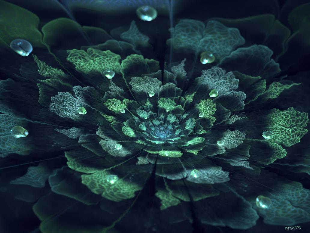 Neptune's Garden by jim373