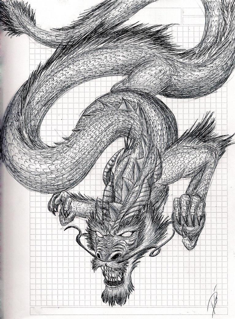 Chinese dragon by DrAcOpIk on DeviantArt