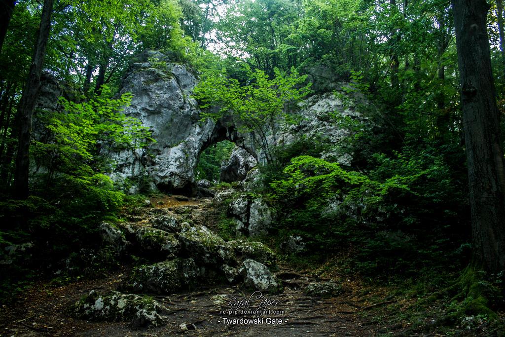 Twardowski Gate (Zloty Potok) by re-pip