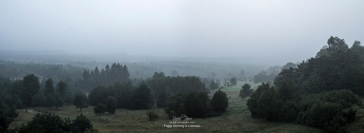 Foggy morning in Lutowiec by re-pip