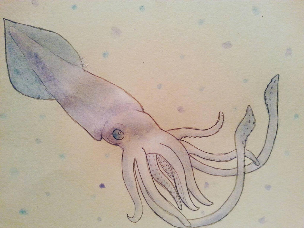 Giant Squid Essays