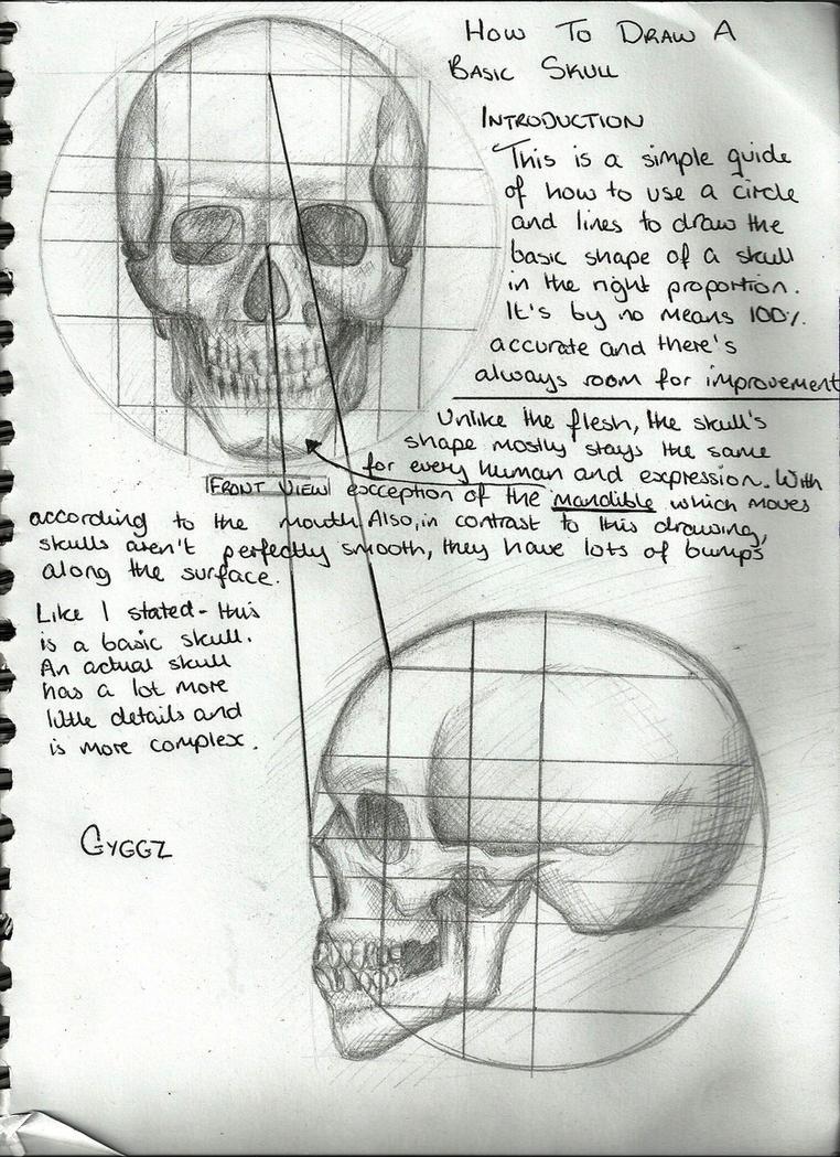 Drawing A Skull (Tutorial) by GyggzyChan