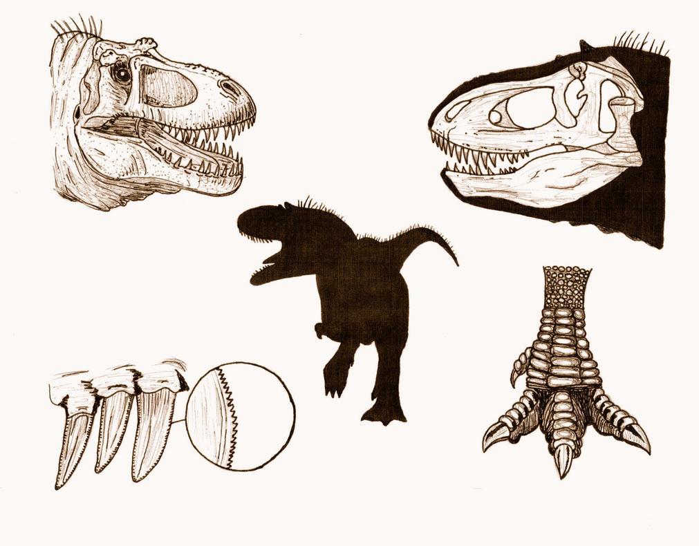 Dinotyrannus by briankroesch