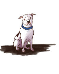 Pit Bull Concept Art for Children's Book Commissio