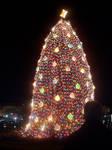 The National Christmas Tree