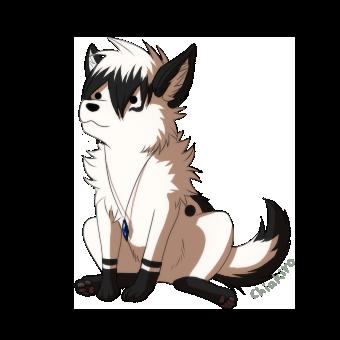 Chiakiro's Profile Picture
