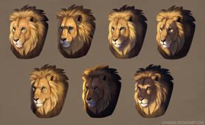 Lit lions