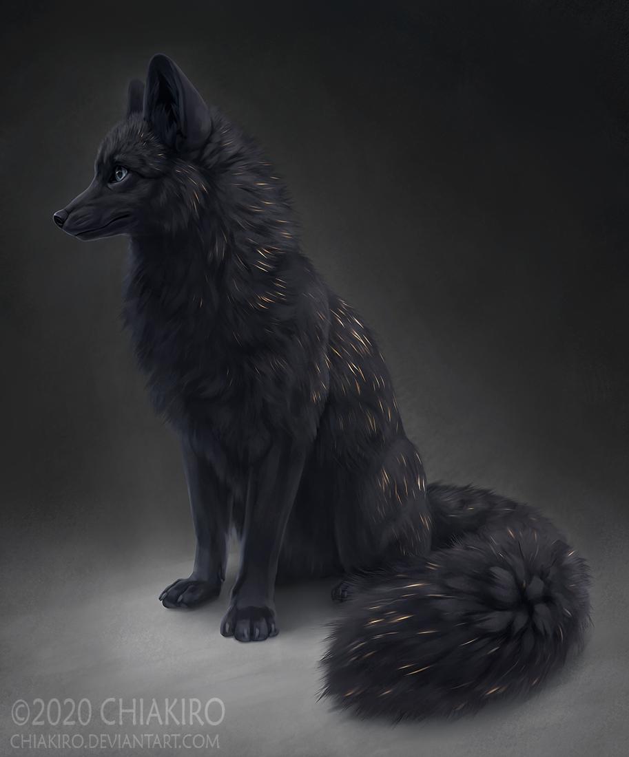The Fire Fox
