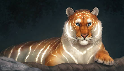Light Tiger