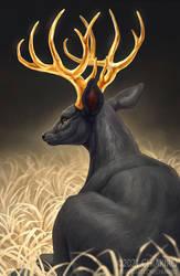Legendary Buck