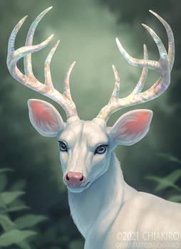 Opal Buck