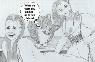 Kitty Kat Wonders reduced by CaveElf