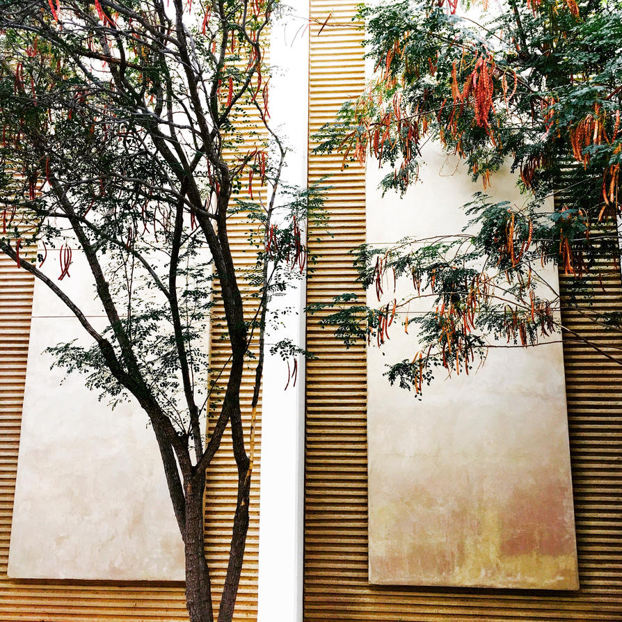 Trees and lines 3 by LizTheKairos