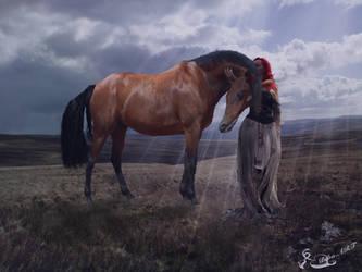 The Horse Whisper by bebasv