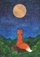 The fox who loves to stargaze by Kirschpraline