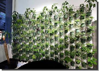 Vertical Container Gardening Systems by verticalplantersnet