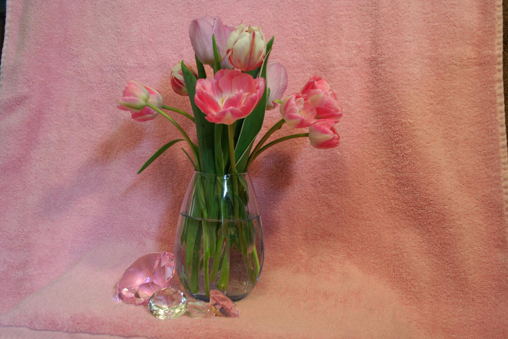 Tulips and Gems by JewelsStock