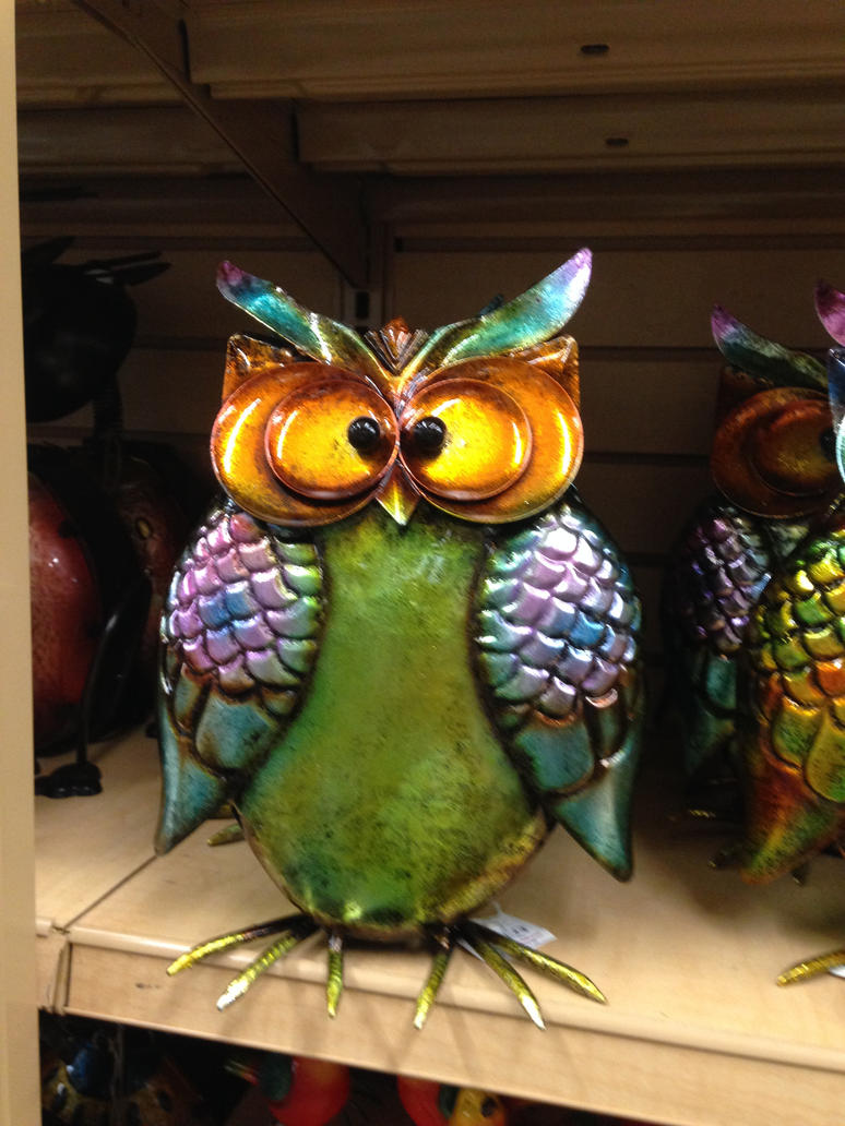 Owl by JewelsStock