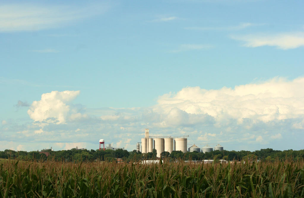 Iowa Farm Land by JewelsStock