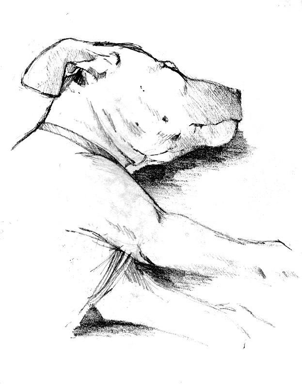 Sleeping Puppy by GreenBearBrummbar