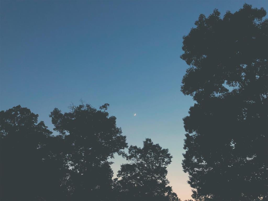 Crescent Moon Rising. by jarsonic