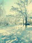 winter komm