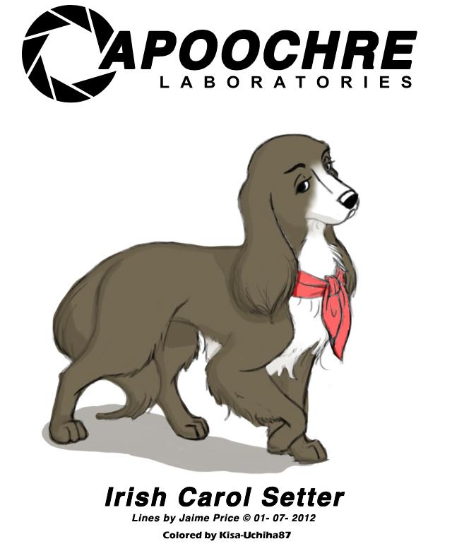 Irish Carol Setter colored by Kisa-Uchiha87
