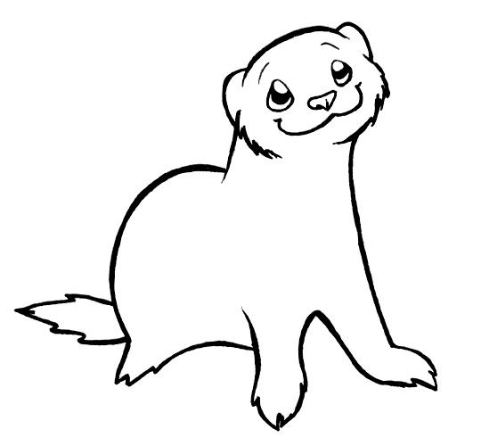 ferret coloring pages chino ferret lineart by spikysshadow on deviantart
