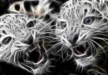 baby leopard ghosts by emreinanc