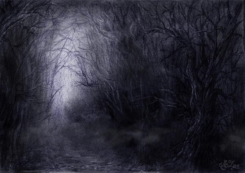 art dark car forest - photo #26
