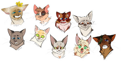 ETS - sum cats by Charadexe