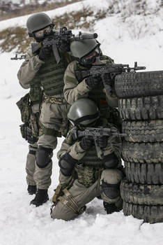 Special Forces of the Ministry of Defence