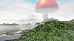 mushroom attempt