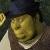 Neck Beard Shrek