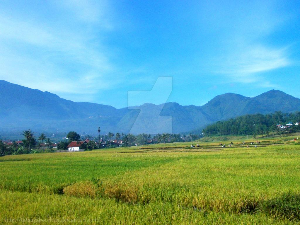 mountain by tatsuyabocchan