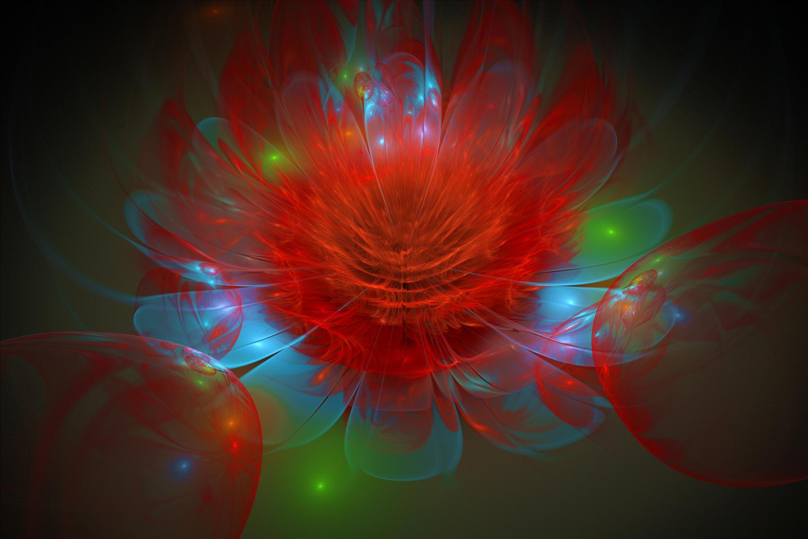 Red Rose for Yoko by Encoder6