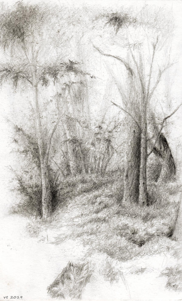 somewhere in the park, sketch