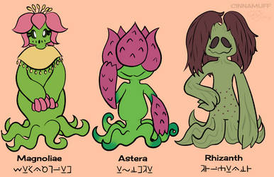 Feuillasia Species by Camichuriin