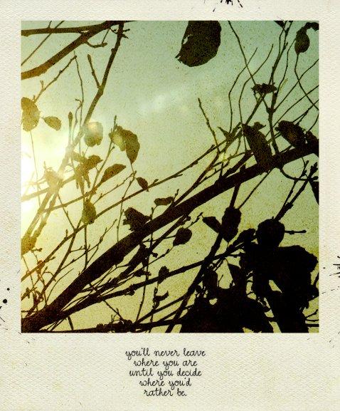 Polaroid story by marjol3in