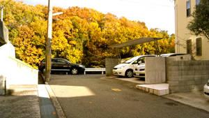 3 - Autumn Glow