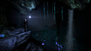 Skyrim - Darkfall Passage