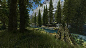 Skyrim - Day in the Forest