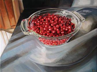 Wheaton River Cranberries by HeatherHorton