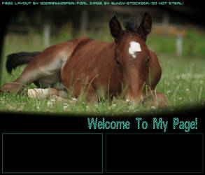 Howrse Layout 2 by SiennaWhisper