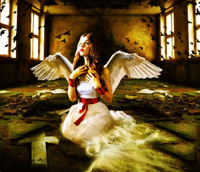Beautiful Fallen Angel by PsdDude
