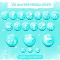 Free Glossy Ice Social Icons by PsdDude