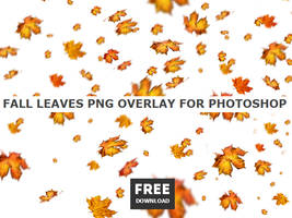 Falling Leaves FREE PNG for Commercial Use by PsdDude