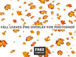 Falling Leaves FREE PNG for Commercial Use